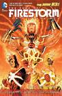 Fury of Firestorm Nuclear Men: Volume 1: God Particle by Ethan Van Sciver, Gail Simone (Paperback, 2012)