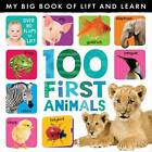 My Big Book of Lift and Learn: 100 First Words by Caterpillar Books (Novelty book, 2013)
