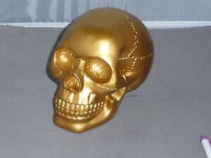 SKULL-Human-Skull-GOLD-TONE