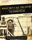 What Men Call Treasure: The Search for Gold at Victorio Peak by David Schweidel, Robert Boswell (Hardback, 2008)