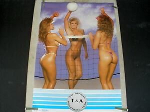 HOT-BUNS-BOOBS-USA-VOLLEYBALL-WOMEN-MODELS-1990-VINTAGE-PIN-UP-POSTER