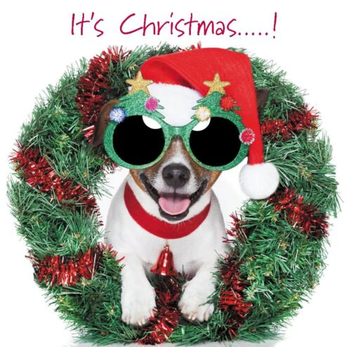 Cute Dogs Puppy Christmas Blank Card Pug Chihuahua Yorkshire Terrier Dachshund