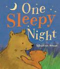 One Sleepy Night by Little Tiger Press (Board book, 2013)
