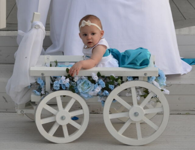 Wedding Wagons For Kids Collection On Ebay