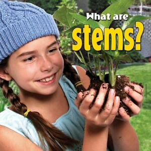 What-Are-Stems-by-Molly-Aloian-2012-Paperback-Molly-Aloian-2012