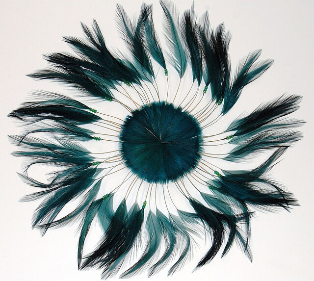 6 Pieces FULL FEATHER PINWHEELS - HUNTER Hackle Feathers; Headbands/Beads/Hats