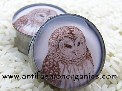 MADE TO ORDER Owl Picture Plugs gauges stretchers ear jewelry NEW