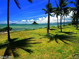 1-ACRE-LOT-OCEAN-VIEW-LAND-ON-HAWAII-ISLAND-TROPICAL-PARADISE-NEAR-OCEAN-TERMS