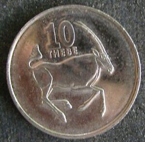 Botswana-10-Thebe-2002-Tier-Gazelle-Springbock-Spiessbock