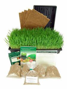 COCOTEK-HYDROPONIC-ORGANIC-WHEATGRASS-GROWING-KIT-GROW-amp-JUICE-WHEAT-GRASS