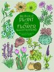 The Big Book of Plant and Flower Illustrations by Maggie Kate (Paperback, 2000)