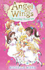 Angel Wings: Birthday Surprise by Michelle Misra (Paperback, 2013)