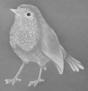 Parchment-Craft-Template-Pattern-Christmas-Robin-NEW-Card-Making