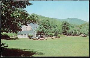 BANGOR-PA-Kirkridge-Old-Farmhouse-Sheep-Flock-Vintage-Postcard-Early-Old-PC