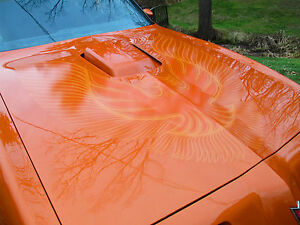 81-Pontiac-Trans-Am-Red-Blue-Orange-Gold-Charcoal-Decal-Kit-Bird-1981