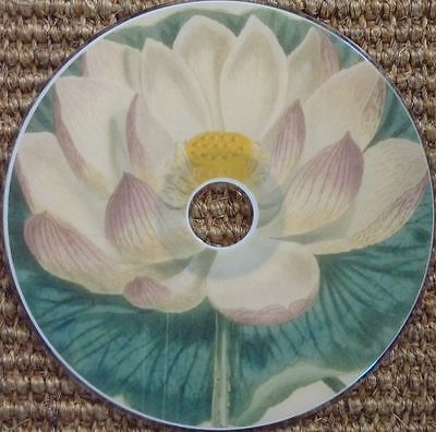 Vintage Curtis Botanical Flower images print scrapbook high resolution 160 CD
