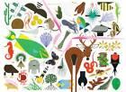 Charley Harper's Animal Kingdom by Todd Oldham (Hardback, 2012)