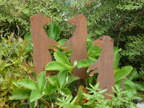 edelrost erdmännchen, gartendeko, gartendekoration, rost, eisen, Garten ideen
