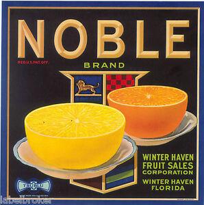 RARE-NOBLE-9X9-VINTAGE-FLORIDA-CRATE-LABEL-WINTER-HAVEN-ORANGE-1930S-LARGE