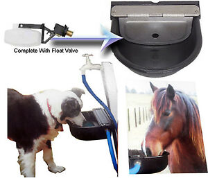 auto fill dog water bowl water bowl trough auto filling float valve equine 7521