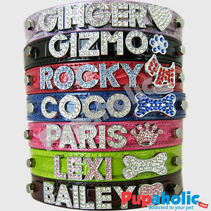 Croc-Dog-Cat-Pet-Personalized-Collar-XS-S-M-L-XL