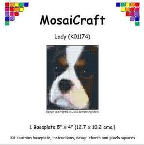 MosaiCraft-Pixel-Manualidades-Mosaico-Arte-Kit-039-Dama-039-Cavalier-King-Charles