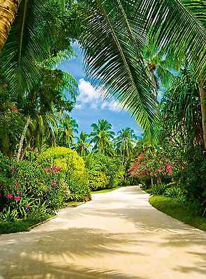 Fototapete WEG DURCH PALMEN 183x254 tropische Pflanzen säumen gepflegten Fussweg