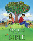Prayers from the Bible by Lois Rock (Hardback, 2013)