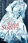 Blood Sisters by Melanie Clegg (Paperback, 2013)