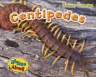 Centipedes by Rebecca Rissman (Hardback, 2012)