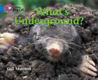 What's Underground? Workbook by HarperCollins Publishers (Paperback, 2012)