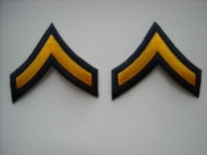 """""""New Condition"""" Gold on Dark Navy Private Police Patch Chevrons (pair)"""