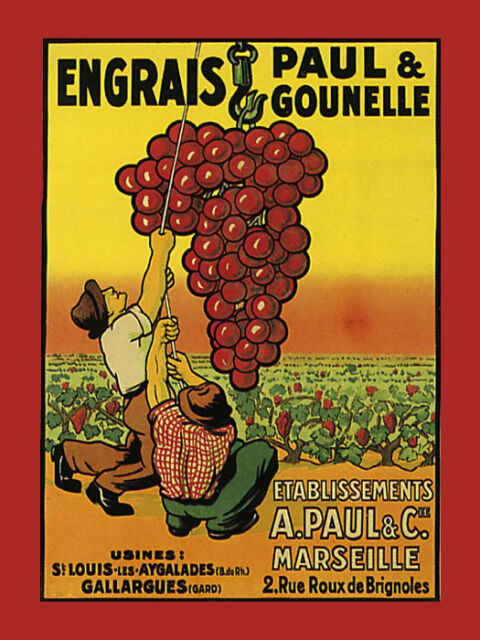 Red White Engrais Wine Marseille Grapes France Vintage Poster Repro FREE S/H