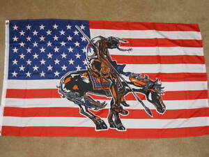 3X5-USA-END-OF-THE-TRAIL-FLAG-NATIVE-AMERICAN-NEW-F128