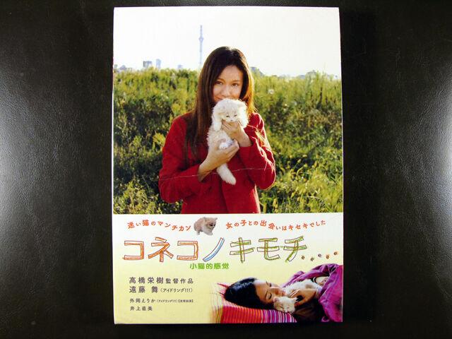 Japanese Movie Drama Koneko No Kimochi DVD