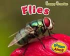Flies by Sian Smith (Hardback, 2012)