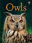 BEG Owls by Emily Bone (Hardback, 2013)