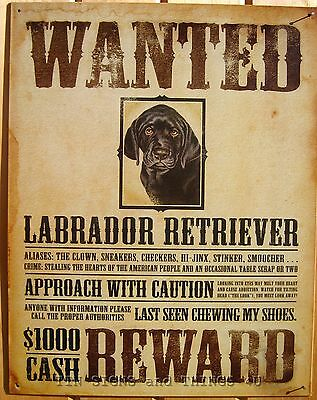 Wanted Poster Black Lab TIN SIGN Labrador retriever funny metal wall decor 1148