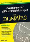 Grundlagen der Differentialgleichungen Fur Dummies by Timm Sigg (Paperback, 2012)