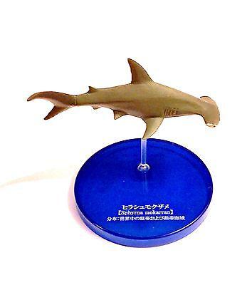 Kaiyodo Takara Tomy Yujin Deep Sea Great Hammerhead Shark Fish Figure Rare!
