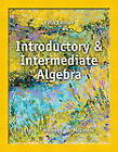 Introductory and Intermediate Algebra by Terry McGinnis, John Hornsby, Margaret L. Lial (Paperback, 2013)