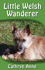 Little Welsh Wanderer by Cathryn Anne (Paperback, 2012)