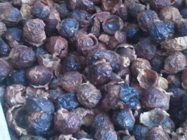5 lbs Certified Organic Soap Nuts Wholes, Halves and Pieces Grade D +Wash Bags