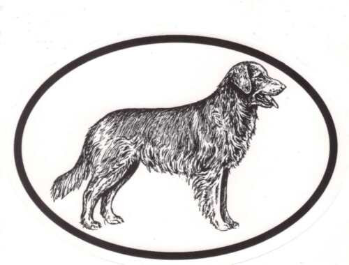 Dog Breeds Oval Vinyl Decal Black /& White Sticker Golden Retriever