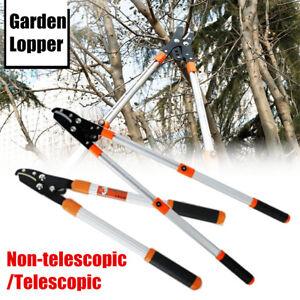 telescopic tree ratchet lopper pruner extending garden. Black Bedroom Furniture Sets. Home Design Ideas