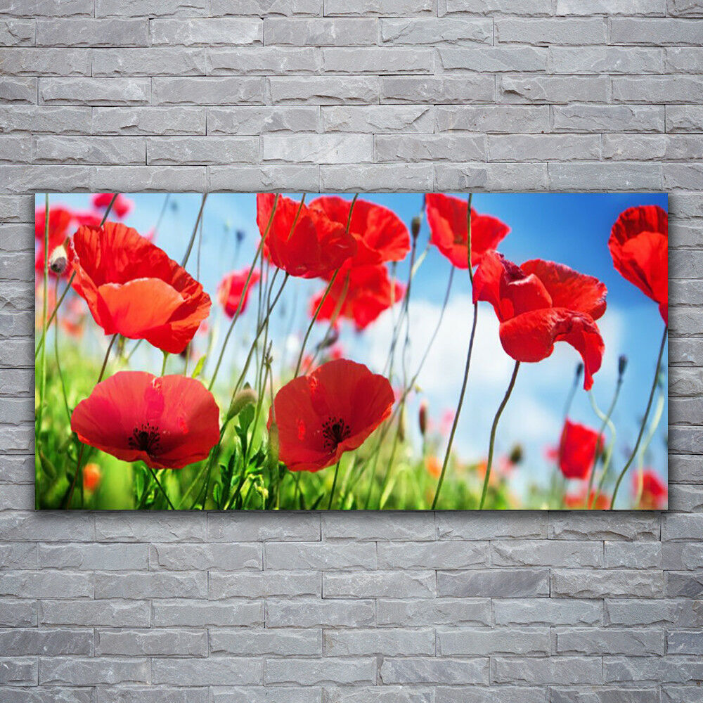 Canvas print Wall art on 120x60 Image Picture Poppy Grass Nature