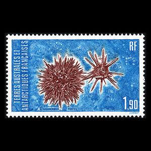 TAAF-1986-Echinoderms-Sc-120-MNH