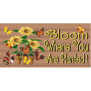 Wood Signs -GS 380 - Bloom Where You are Planted- Wood Plaque