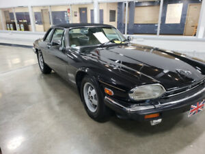 Classic Jag Drastically Reduced do to Covid