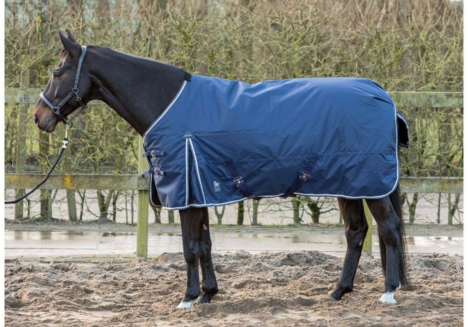 Harry's Horse outdoordecke 100g relleno T C-alimentación animal 600d poliéster impermeable